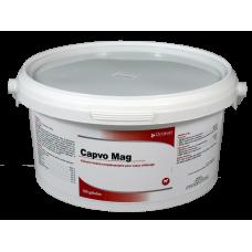 Capvo Mag - Pot of 100 capsules