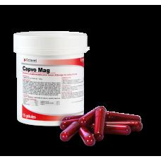 Capvo Mag 15 capsules