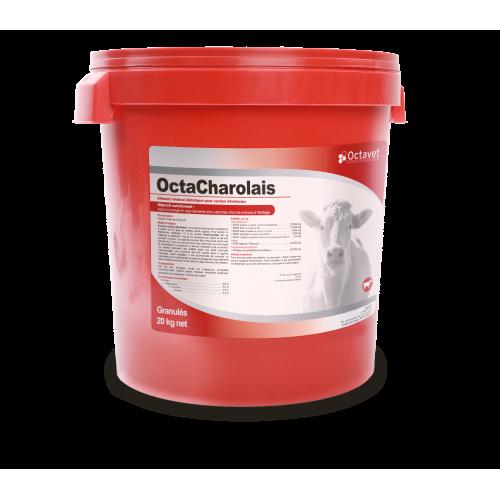 OctaCharolais - a 20 kg bucket