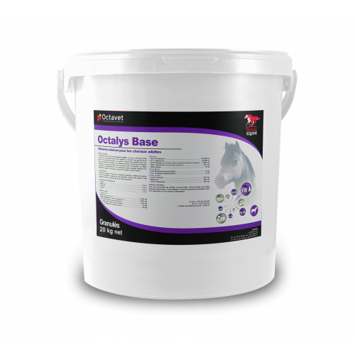 Octalys Base - a 20 kg bucket