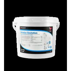Octalys Gestation (5kg)