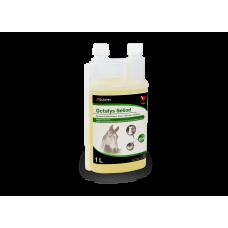 Octalys Séliod - Bidon de 1 litre